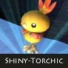 torchicshine